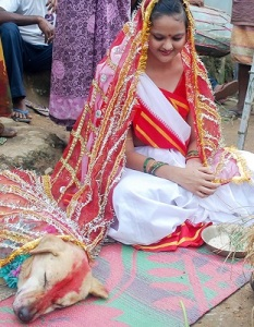 Without a doubt this is a powerful reason to marry a dog in India
