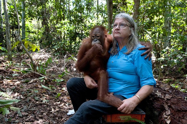 The woman who lives with orangutans