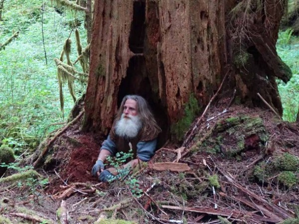 The man who lives in a tree hole